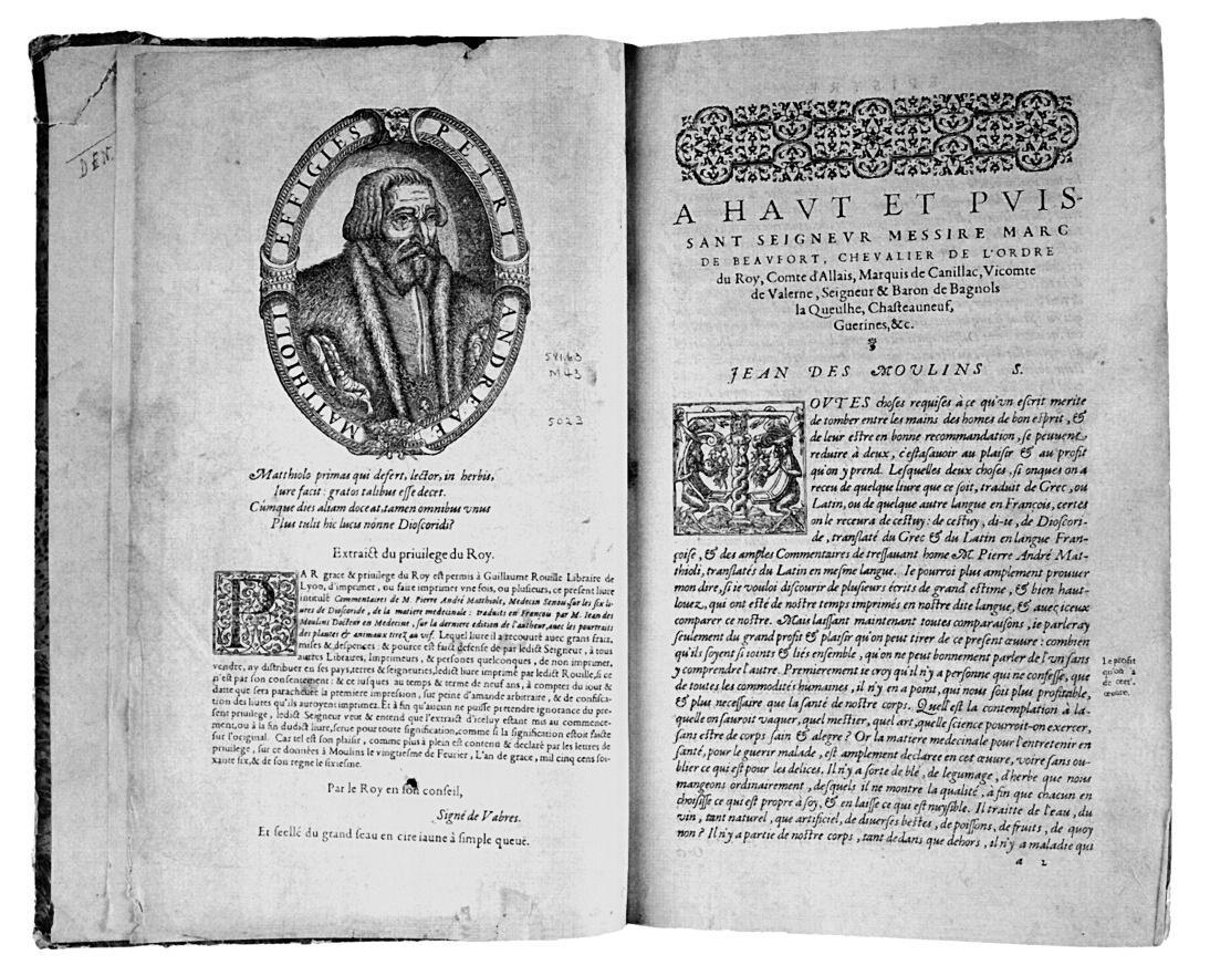 Dizionario biografico dei friulani